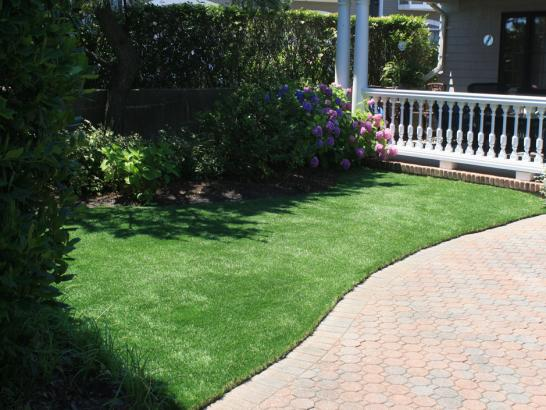 Artificial Grass Photos: Artificial Animal Shelter Marshfield Massachusetts for Dogs