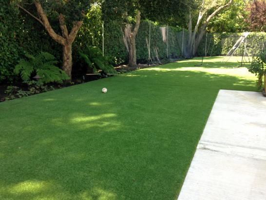 Artificial Grass Photos: Artificial Veterinary Clinic Hopkinton Massachusetts for