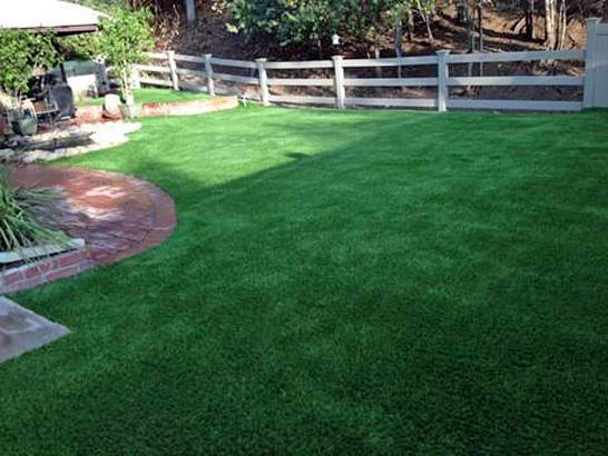 Artificial Grass Photos: Artificial Veterinary Clinic Salem New Hampshire for Dogs