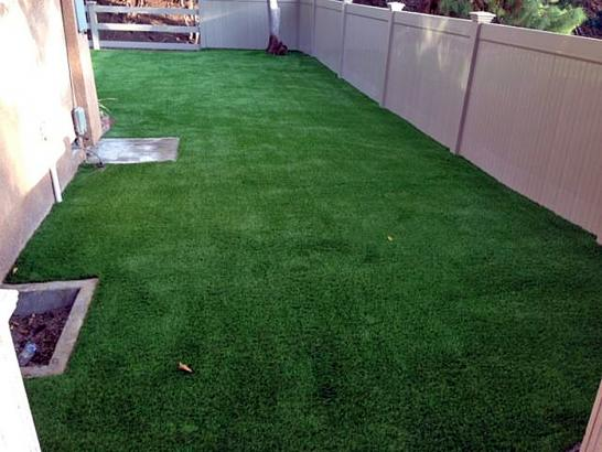 Artificial Grass Photos: Synthetic Pets Areas Clinton Massachusetts for Dogs   Fountans