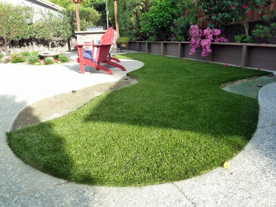 Artificial Grass Photos: Synthetic Veterinary Clinic Sterling Massachusetts Installation